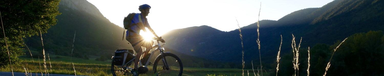 Entretien de vélo électrique