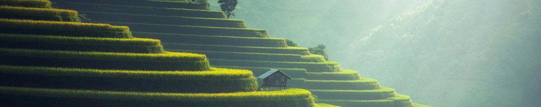 Partir en voyage en Asie